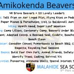Amikokenda Beavers